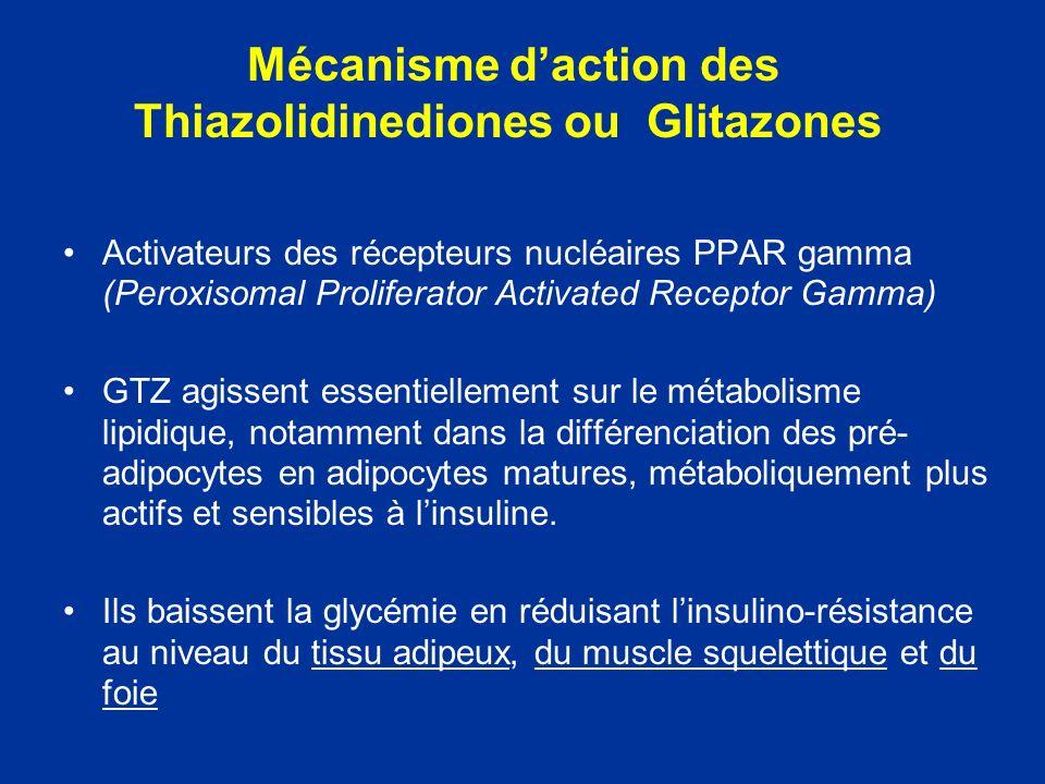 Mécanisme daction des Thiazolidinediones ou Glitazones Activateurs des récepteurs nucléaires PPAR gamma (Peroxisomal Proliferator Activated Receptor G