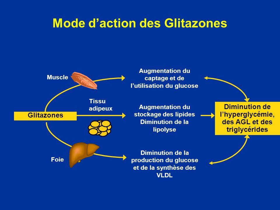 Mode daction des Glitazones Augmentation du captage et de lutilisation du glucose Diminution de lhyperglycémie, des AGL et des triglycérides Augmentat
