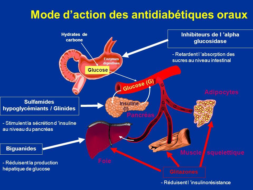 Mode daction des antidiabétiques oraux Glucose (G) Hydrates de carbone Glucose Insuline (I) I I I I I I I I G G G G G G G G I G G G Sulfamides hypogly