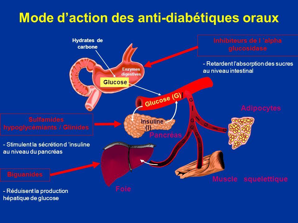 Mode daction des anti-diabétiques oraux Glucose (G) Hydrates de carbone Glucose Insuline (I) I I I I I I I I G G G G G G G G I G G G Sulfamides hypogl