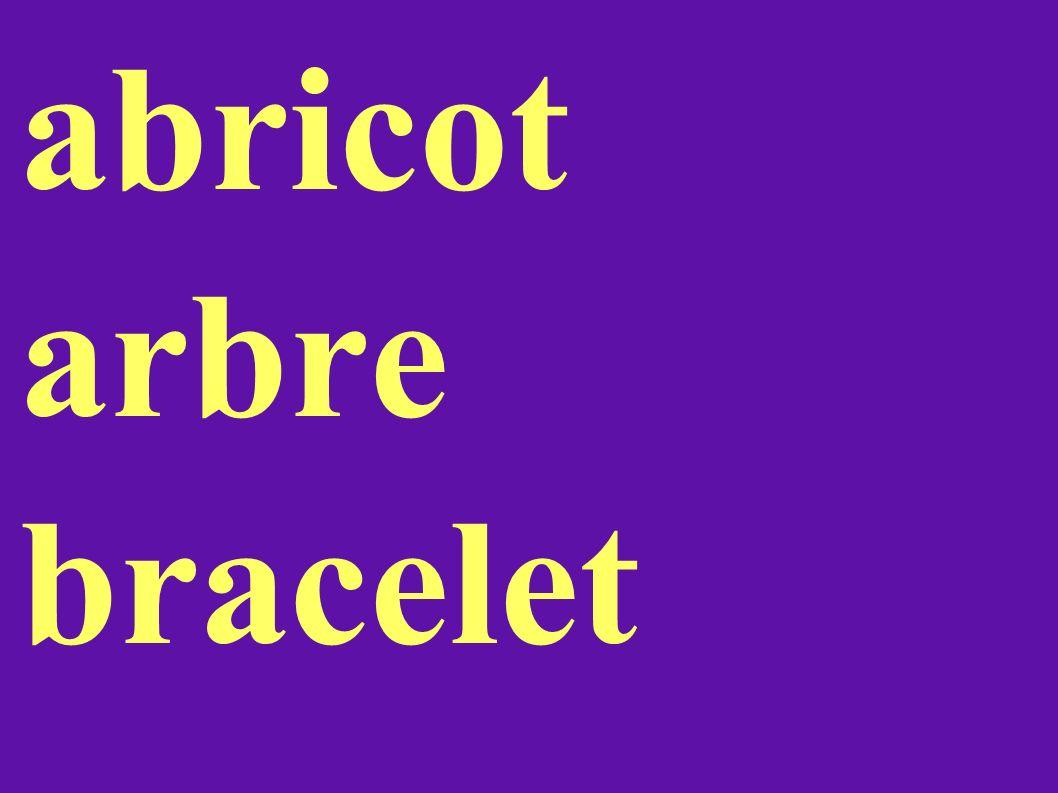 abricot arbre bracelet