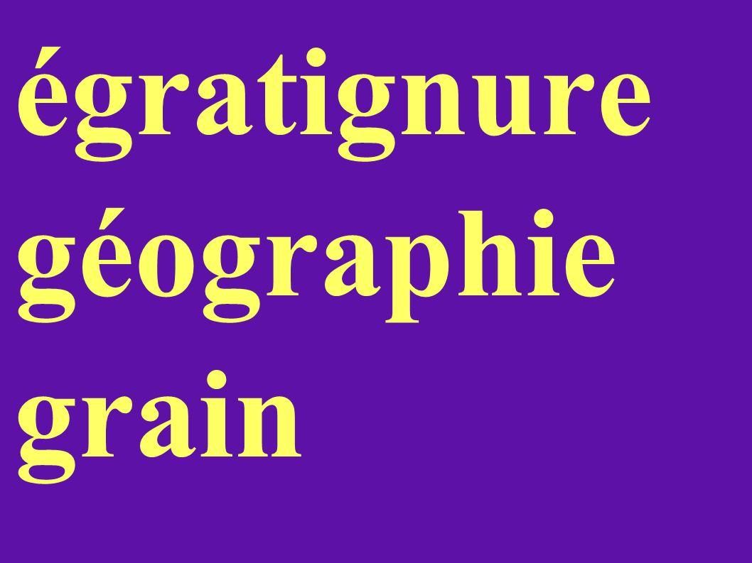 égratignure géographie grain