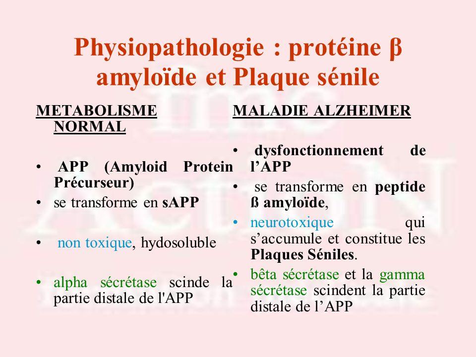 Physiopathologie : protéine β amyloïde et Plaque sénile METABOLISME NORMAL APP (Amyloid Protein Précurseur) se transforme en sAPP non toxique, hydosol