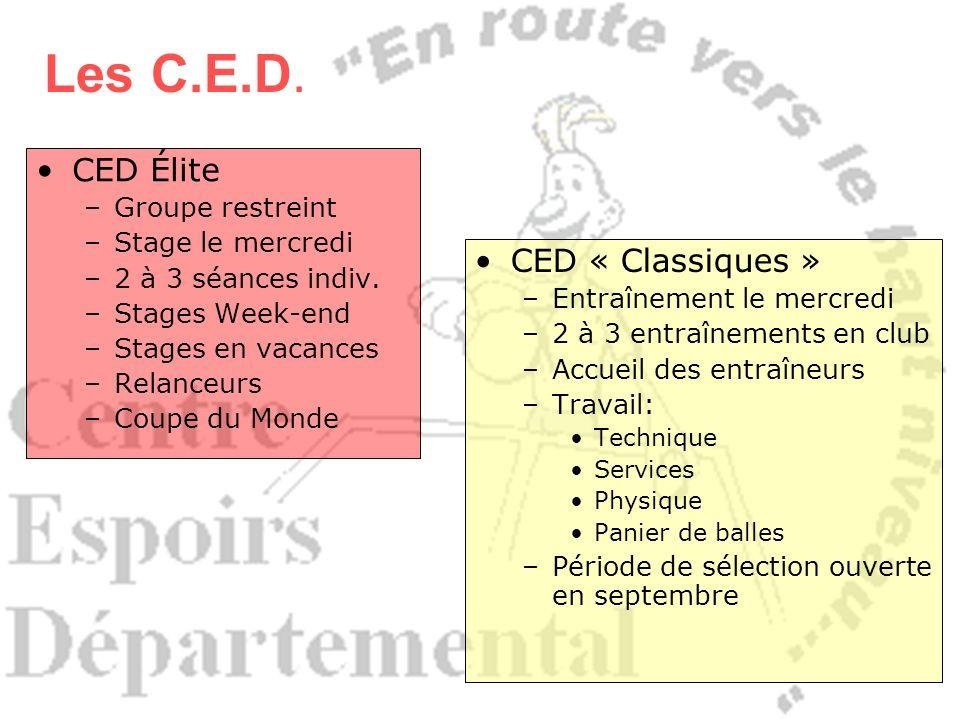 CED Élite –Groupe restreint –Stage le mercredi –2 à 3 séances indiv. –Stages Week-end –Stages en vacances –Relanceurs –Coupe du Monde CED « Classiques
