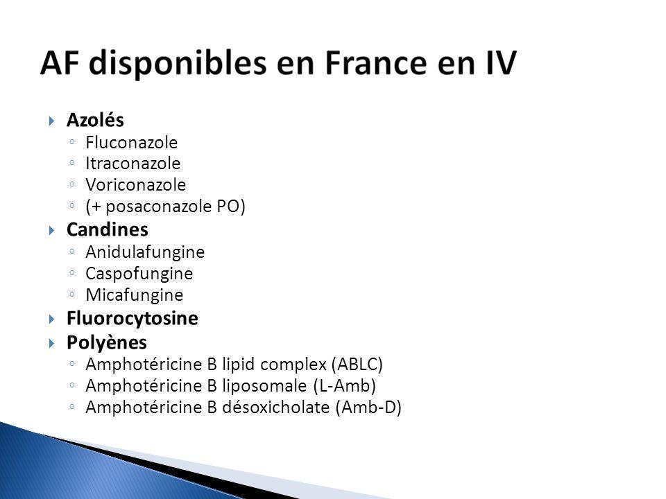 Azolés Fluconazole Itraconazole Voriconazole (+ posaconazole PO) Candines Anidulafungine Caspofungine Micafungine Fluorocytosine Polyènes Amphotéricin