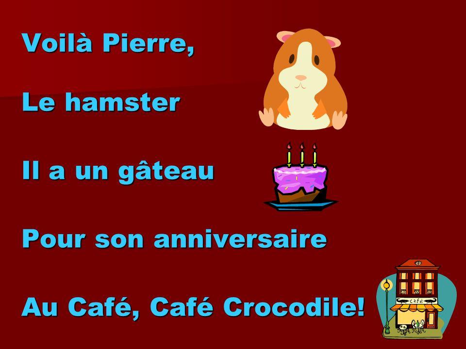 Voilà Pierre, Le hamster Il a un gâteau Pour son anniversaire Au Café, Café Crocodile!