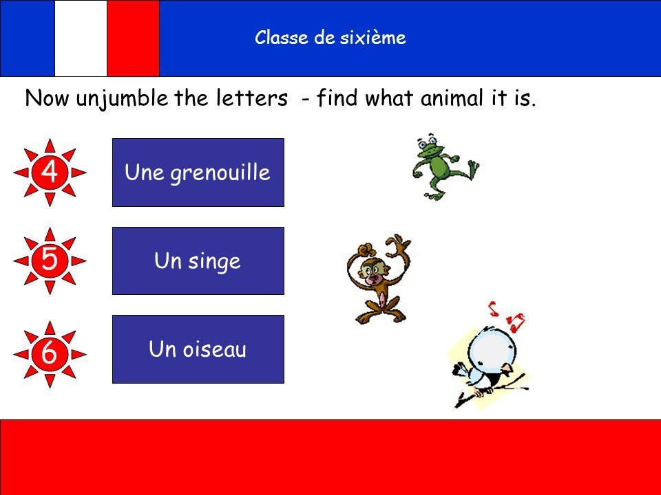 A toi Classe de sixième Now unjumble the letters - find what animal it is. noguileunelre 4 ungesin eunoaisu 5 6