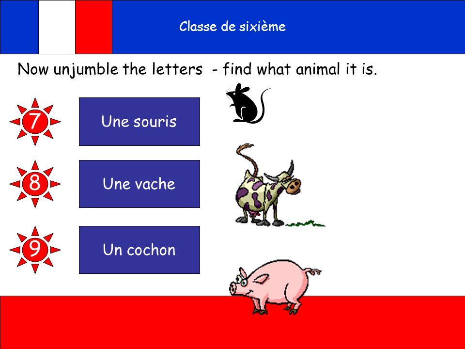 A toi Classe de sixième Now unjumble the letters - find what animal it is. sourenisu 7 vahuence chunonco 8 9