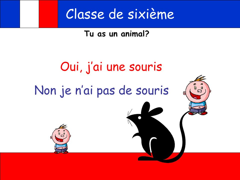A toi Classe de sixième Listen and decide if the word you hear matches the picture, write vrai or write the animal you hear