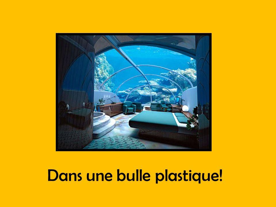 Dans une bulle plastique!
