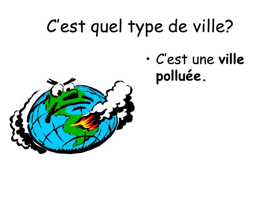 Cest quel type de ville? Cest une ville polluée.