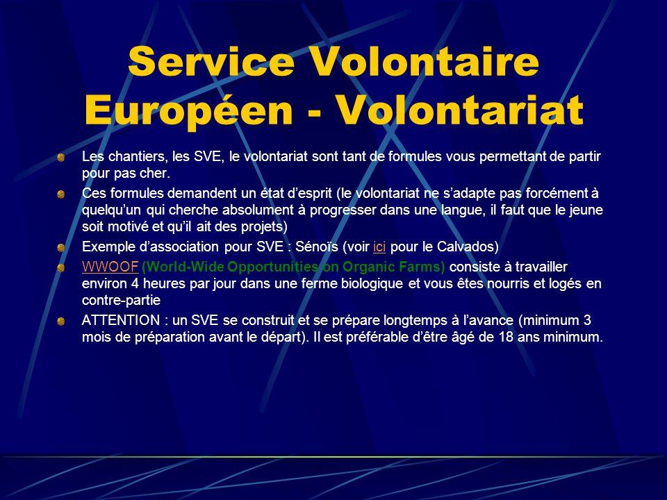 Service Volontaire Européen - Volontariat Les chantiers, les SVE, le volontariat sont tant de formules vous permettant de partir pour pas cher.