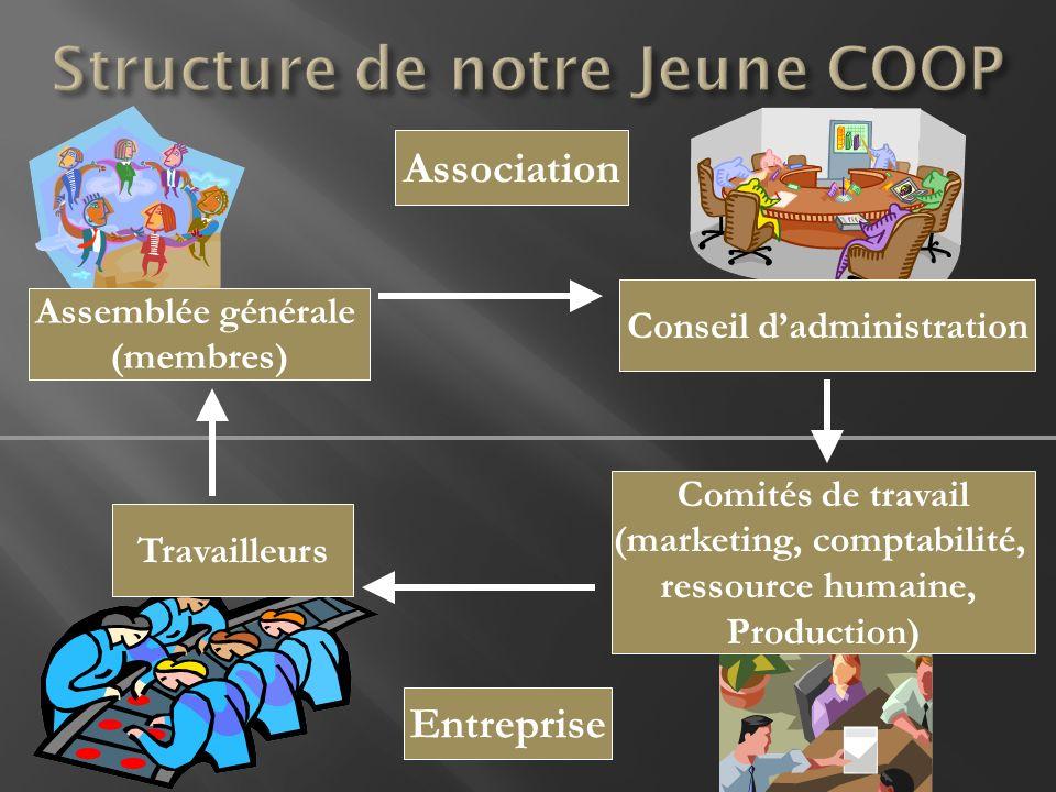 Association Assemblée générale (membres) Conseil dadministration Comités de travail (marketing, comptabilité, ressource humaine, Production) Entrepris
