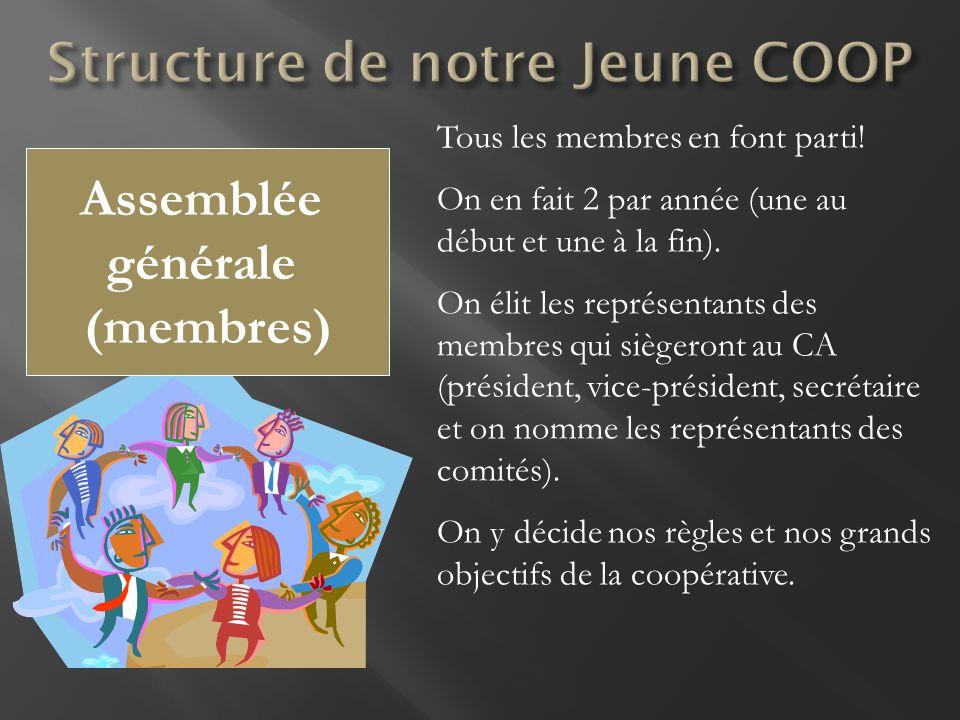 Assemblée générale (membres) Tous les membres en font parti! On en fait 2 par année (une au début et une à la fin). On élit les représentants des memb