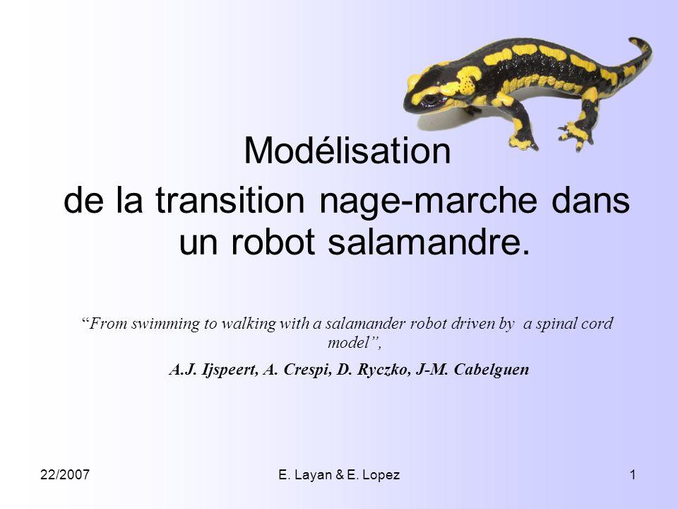 22/2007E. Layan & E. Lopez1 Modélisation de la transition nage-marche dans un robot salamandre. From swimming to walking with a salamander robot drive