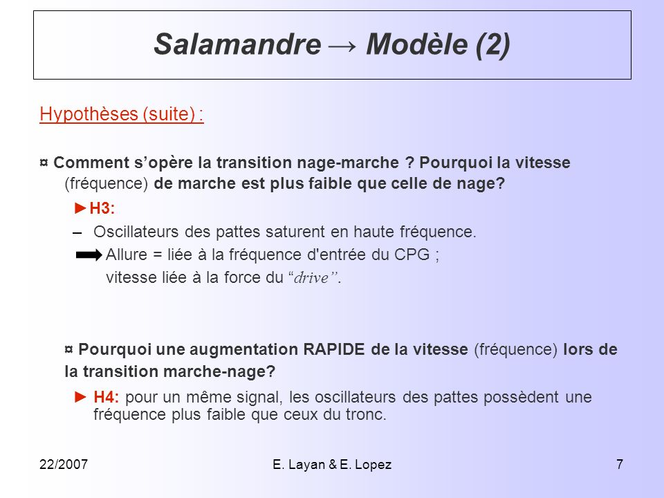 22/2007E. Layan & E. Lopez7 Hypothèses (suite) : ¤ Comment sopère la transition nage-marche ? Pourquoi la vitesse (fréquence) de marche est plus faibl