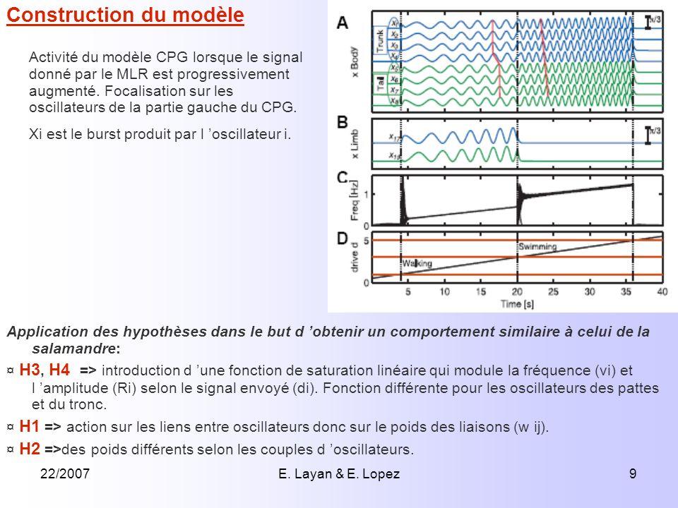 22/2007E. Layan & E. Lopez9 Application des hypothèses dans le but d obtenir un comportement similaire à celui de la salamandre: ¤ H3, H4 => introduct