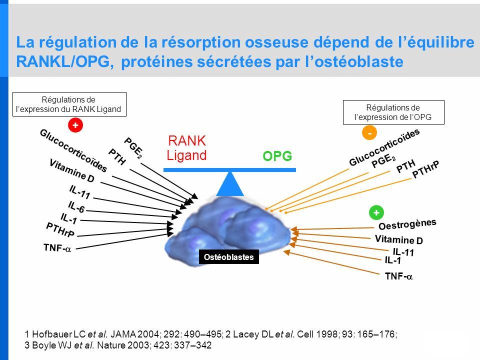 La régulation de la résorption osseuse dépend de léquilibre RANKL/OPG, protéines sécrétées par lostéoblaste 1 Hofbauer LC et al. JAMA 2004; 292: 490–4