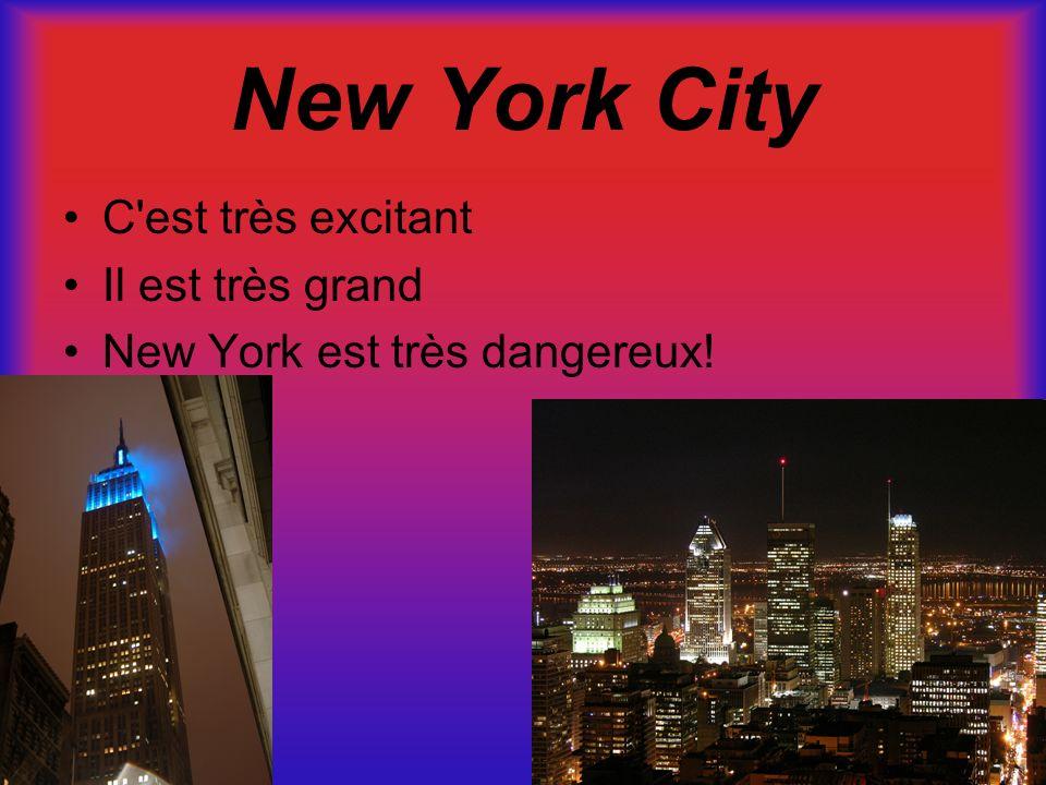 New York City C'est très excitant Il est très grand New York est très dangereux!