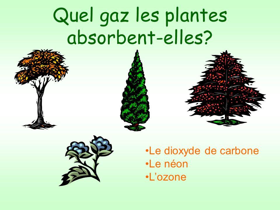 Quel gaz les plantes absorbent-elles? Le dioxyde de carbone Le néon Lozone
