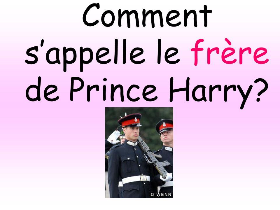 Comment sappelle le frère de Prince Harry?