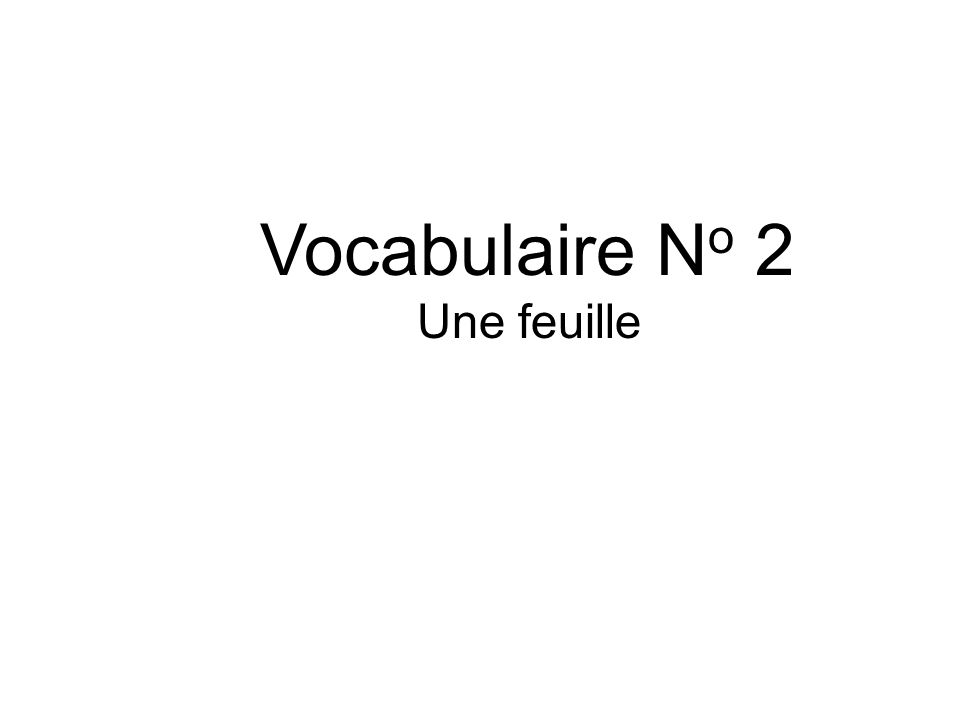 Vocabulaire N o 2 Une feuille