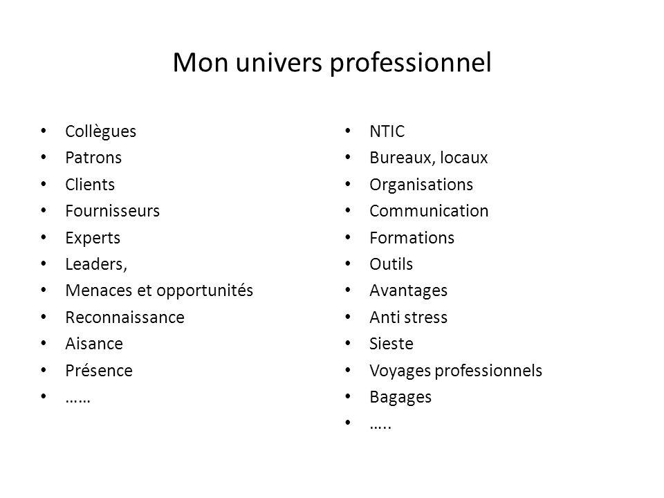 Mon univers professionnel Collègues Patrons Clients Fournisseurs Experts Leaders, Menaces et opportunités Reconnaissance Aisance Présence …… NTIC Bure