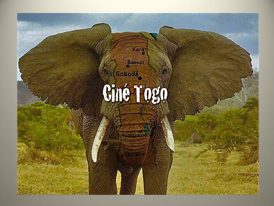 LAssociation pour la Promotion de la Culture, des Arts et des Loisirs avec Le Festival International des Rencontres du Cinéma et de la Télévision du Togo - RECITEL et Le Cinéma Itinérant du Togo donnent accès à la culture locale, participent au développement, contribuent à la protection et à la promotion de la diversité culturelle.