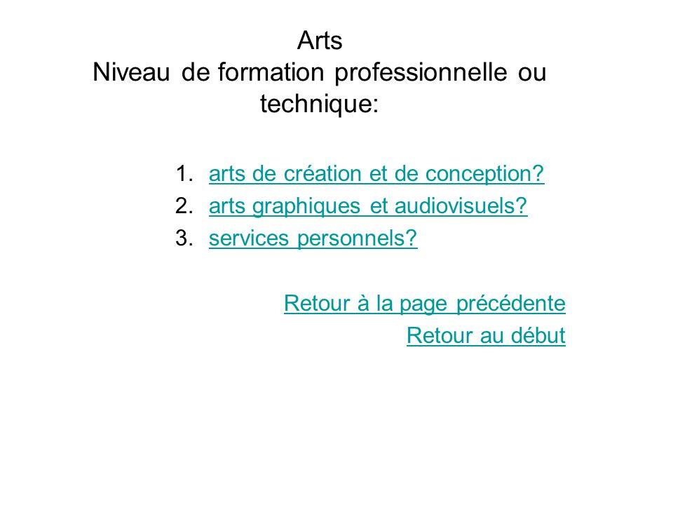 Arts Niveau de formation professionnelle ou technique: 1.arts de création et de conception?arts de création et de conception? 2.arts graphiques et aud