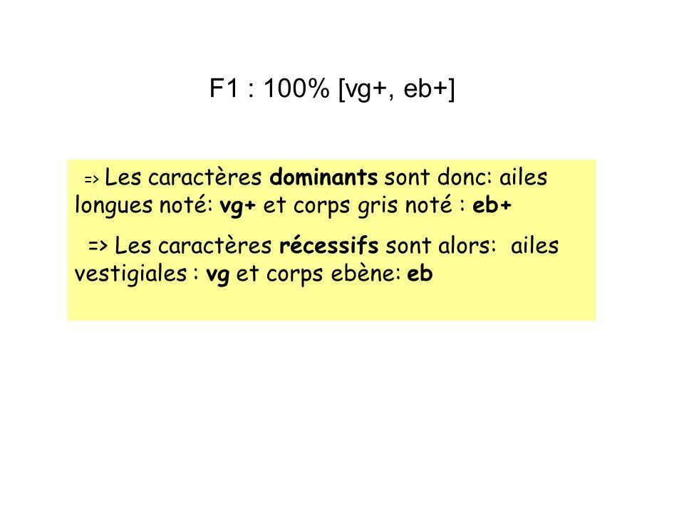 => Les caractères dominants sont donc: ailes longues noté: vg+ et corps gris noté : eb+ => Les caractères récessifs sont alors: ailes vestigiales : vg
