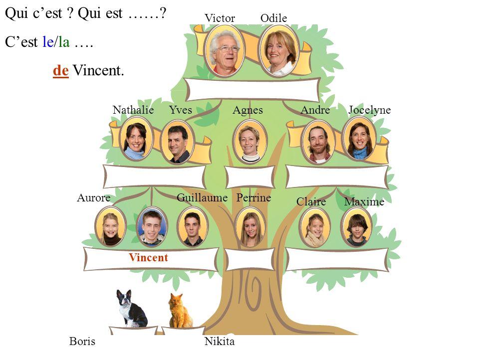 VictorOdile YvesNathalieAgnesAndreJocelyne GuillaumeAurorePerrine ClaireMaxime Vincent NikitaBoris Qui cest ? Qui est ……? Cest le/la …. de Vincent.