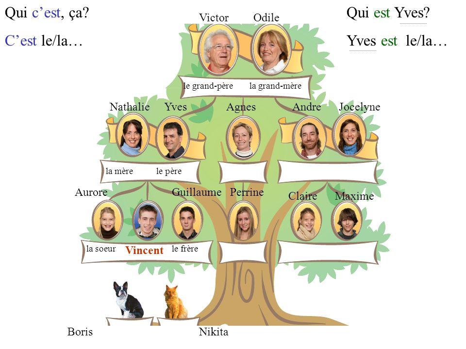 VictorOdile YvesNathalieAgnesAndreJocelyne GuillaumeAurorePerrine ClaireMaxime Vincent NikitaBoris la mère le frèrela soeur le père le grand-pèrela grand-mère Il a combien de frères et de soeurs.