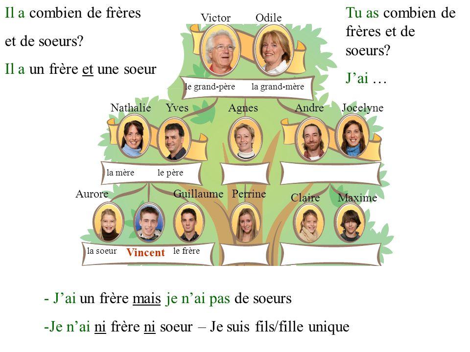 VictorOdile YvesNathalieAgnesAndreJocelyne GuillaumeAurorePerrine ClaireMaxime Vincent NikitaBoris la mère le frèrela soeur le père le grand-pèrela grand-mère Qui cest, ça.