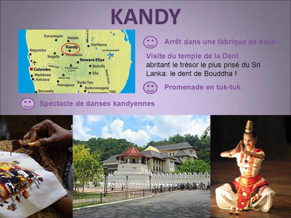 KANDY Visite du temple de la Dent abritant le trésor le plus prisé du Sri Lanka: le dent de Bouddha ! Promenade en tuk-tuk Spectacle de danses kandyen
