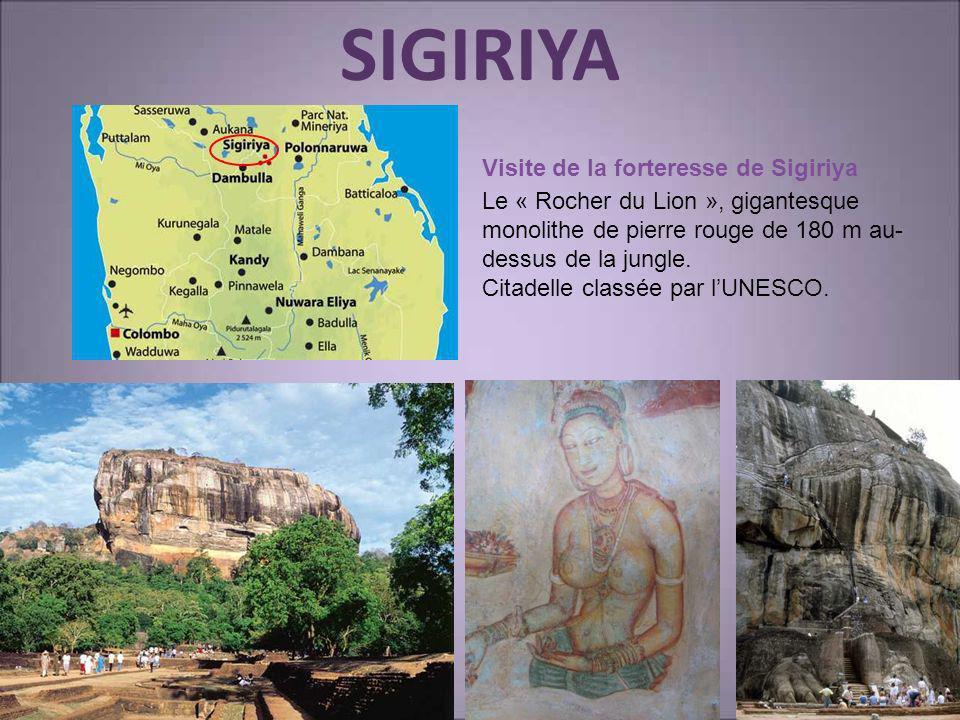 SIGIRIYA Visite de la forteresse de Sigiriya Le « Rocher du Lion », gigantesque monolithe de pierre rouge de 180 m au- dessus de la jungle. Citadelle