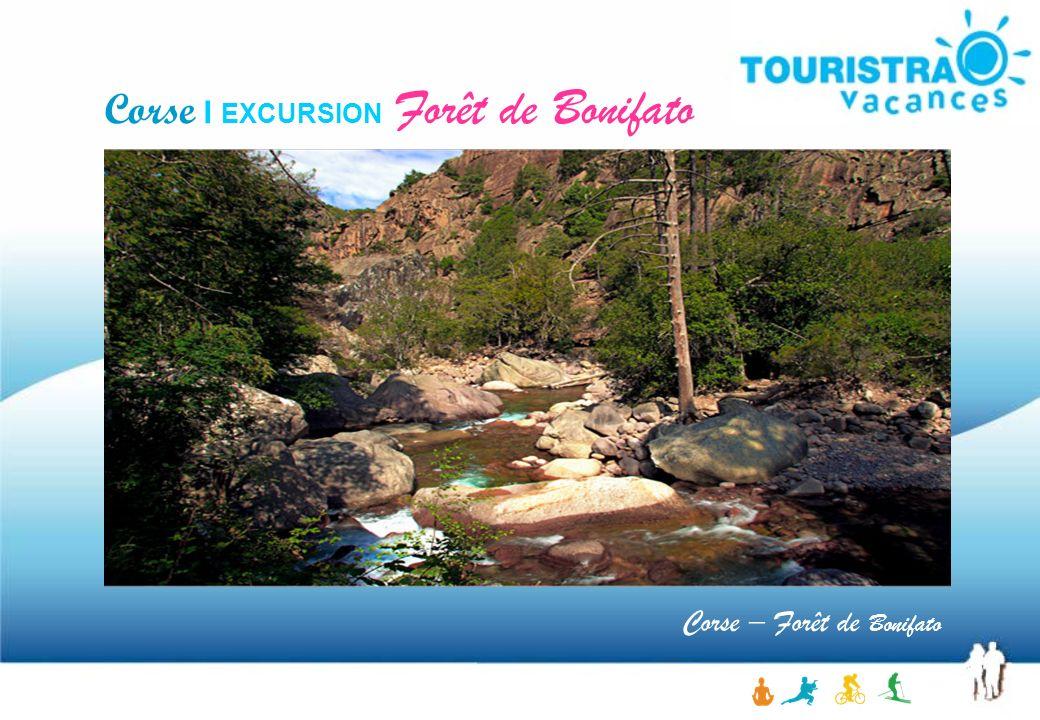 Corse – Forêt de Bonifato Corse I EXCURSION Forêt de Bonifato