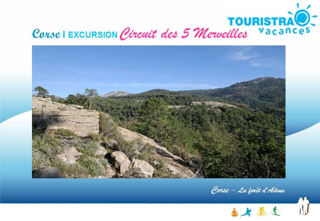 Corse I EXCURSION Circuit des 5 Merveilles Corse – La forêt d'Aïtone