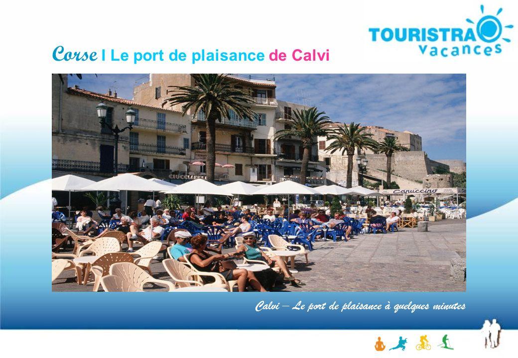Calvi – Le port de plaisance à quelques minutes Corse I Le port de plaisance de Calvi
