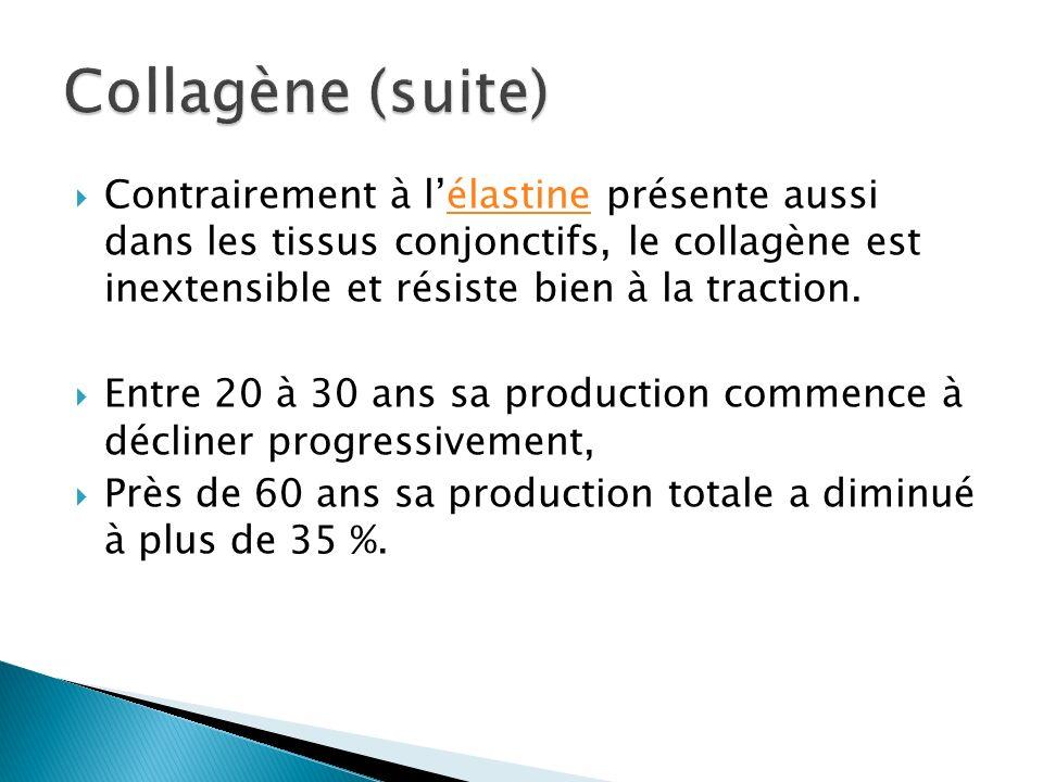 Contrairement à lélastine présente aussi dans les tissus conjonctifs, le collagène est inextensible et résiste bien à la traction.élastine Entre 20 à