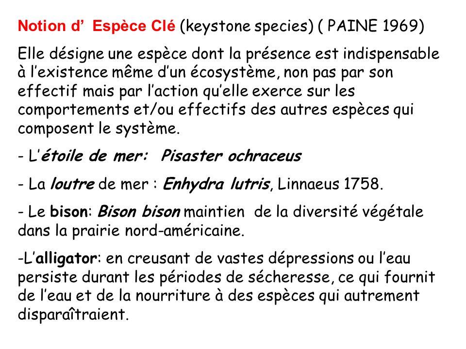 Notion d Espèce Clé (keystone species) ( PAINE 1969) Elle désigne une espèce dont la présence est indispensable à lexistence même dun écosystème, non pas par son effectif mais par laction quelle exerce sur les comportements et/ou effectifs des autres espèces qui composent le système.