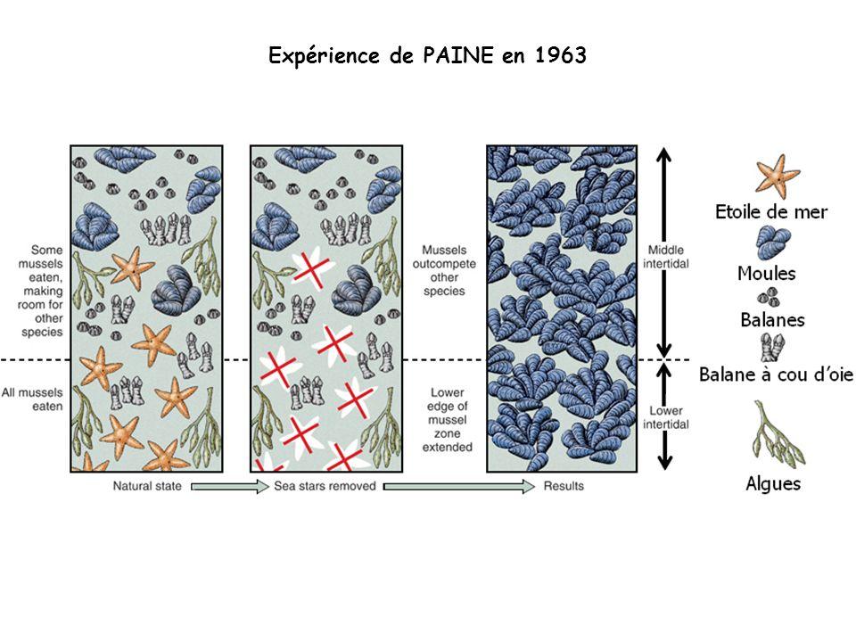 Expérience de PAINE en 1963