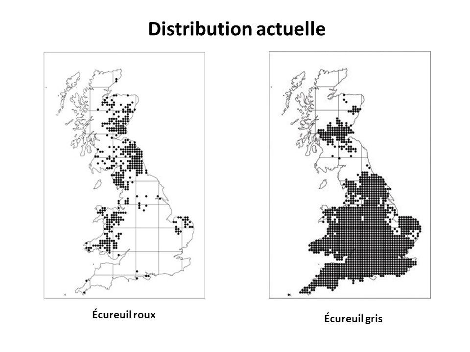 Écureuil roux Écureuil gris Distribution actuelle