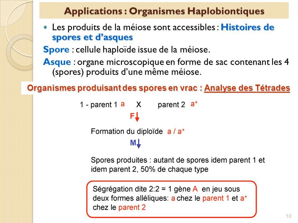 Histoires de spores et dasques Les produits de la méiose sont accessibles : Histoires de spores et dasques Spore : cellule haploïde issue de la méiose.