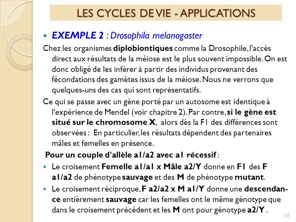 EXEMPLE 2 : Drosophila melanogaster Chez les organismes diplobiontiques comme la Drosophile, l accès direct aux résultats de la méiose est le plus souvent impossible.