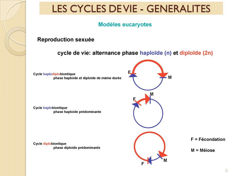 2 LES CYCLES DE VIE - GENERALITES