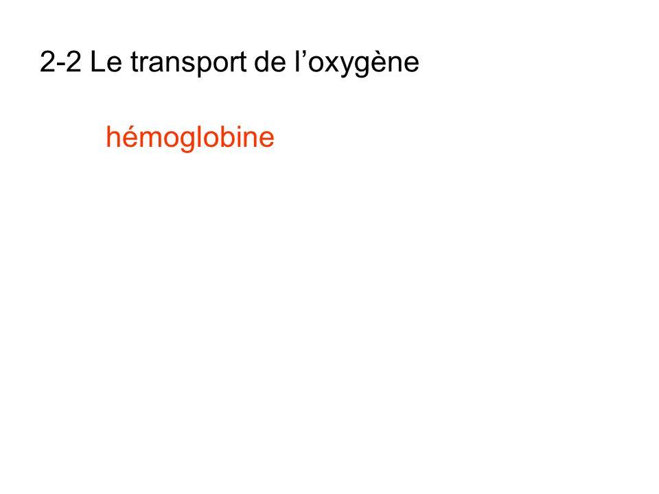 2-2 Le transport de loxygène hémoglobine