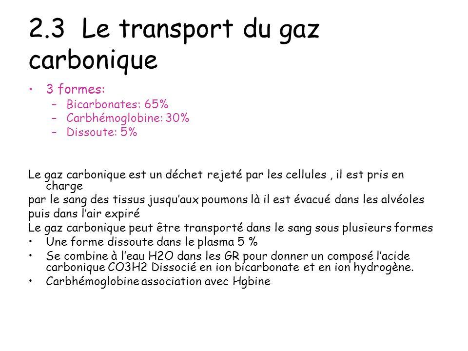 2.3 Le transport du gaz carbonique 3 formes: –Bicarbonates: 65% –Carbhémoglobine: 30% –Dissoute: 5% Le gaz carbonique est un déchet rejeté par les cel