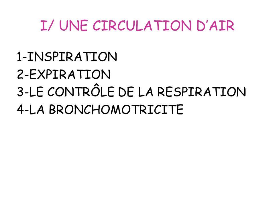 I/ UNE CIRCULATION DAIR 1-INSPIRATION 2-EXPIRATION 3-LE CONTRÔLE DE LA RESPIRATION 4-LA BRONCHOMOTRICITE