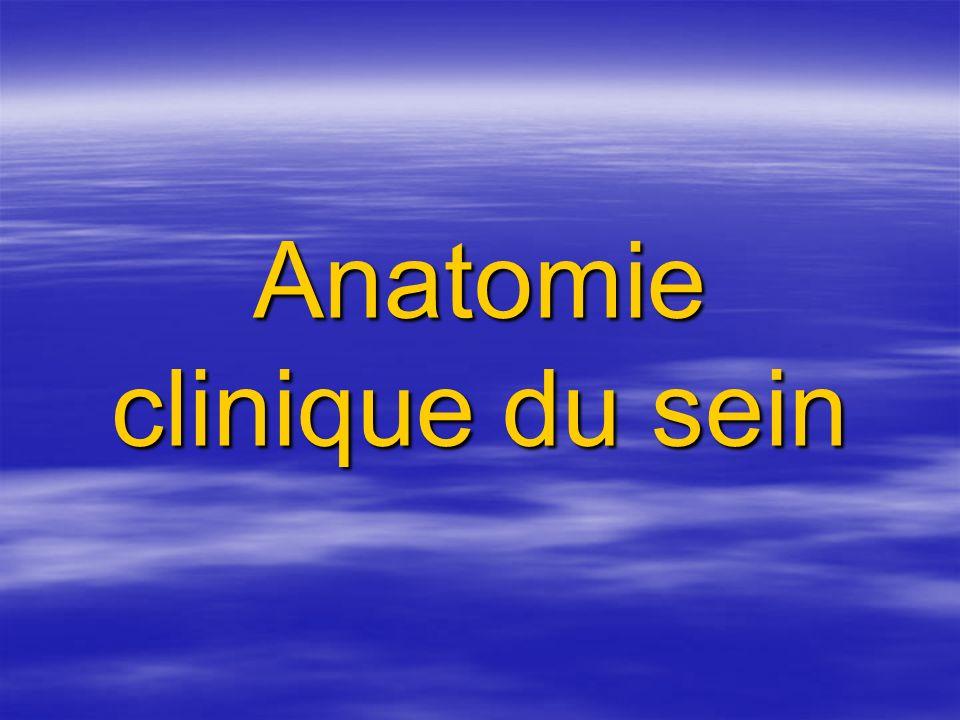 Plaque aréolo mamelonnaire T fibroélastique T fibroélastique Souvre 10 à 15 canaux galactophores terminaux Souvre 10 à 15 canaux galactophores terminaux Aréole: glandes de morgani Aréole: glandes de morgani Muscle mammillaire (fonction excrétrice) Muscle mammillaire (fonction excrétrice)