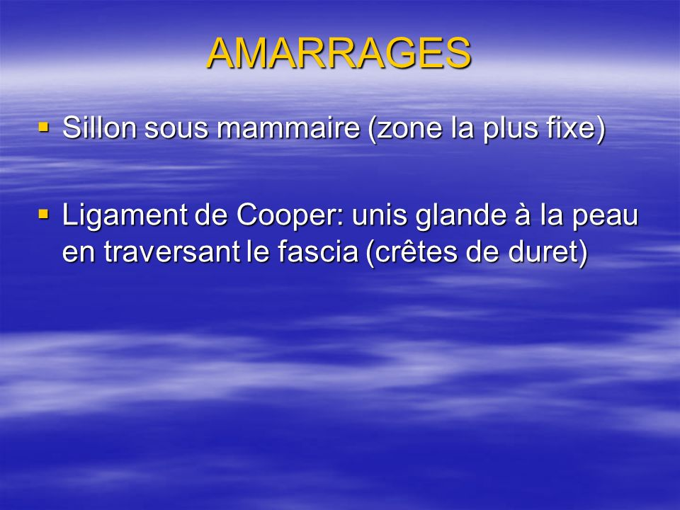 AMARRAGES Sillon sous mammaire (zone la plus fixe) Sillon sous mammaire (zone la plus fixe) Ligament de Cooper: unis glande à la peau en traversant le